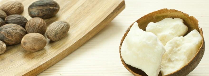 Shea butter nuts