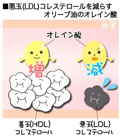 オレイン酸 画像